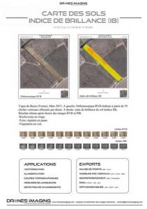 viticulture_indice_de_brillance_IB_drones_imaging
