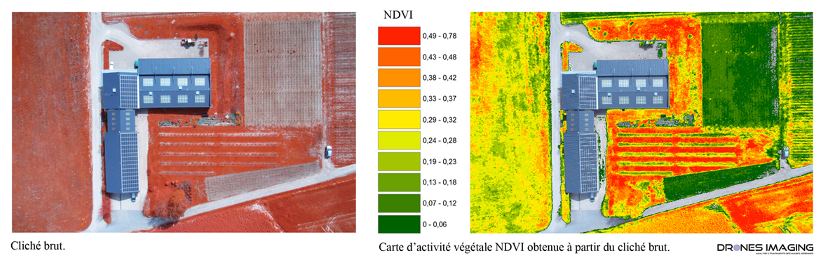 exemple_proche_infrarouge_NDVI