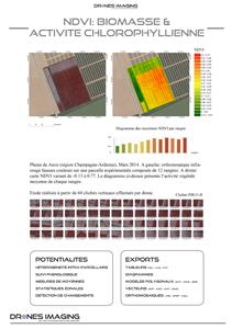 NDVI_2d_drones_imaging
