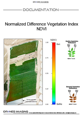 Indice_végétation_NDVI_Drones_Imaging©